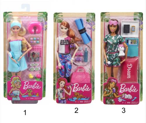 Barbie® veselīga dzīvesstila komplekts + lelle